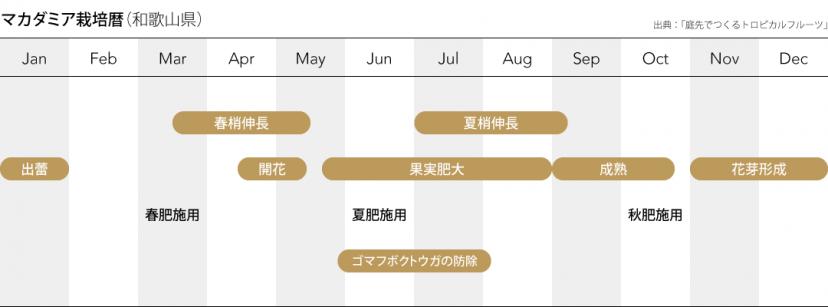 マカダミア栽培暦(和歌山県)出典:「庭先で作るトロピカルフルーツ」