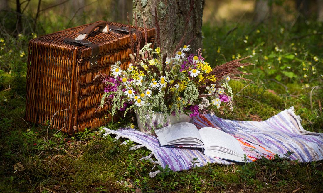 マカダミアピクニック!簡単手軽に可愛く楽しむ方法とは…