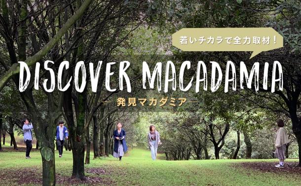 若いチカラで全力取材!Discover Macadamia ― 発見マカダミア