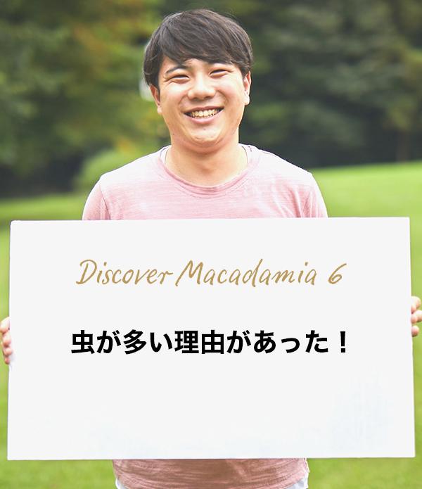 Discover Macadamia 6 虫が多い理由があった!